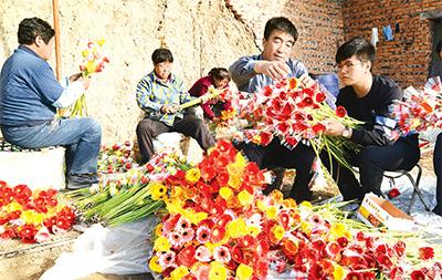 """遼寧義縣采取""""集體經濟+合作社+農戶""""模式,發展花卉種植等特色產業,帶動整村脫貧銷號。"""