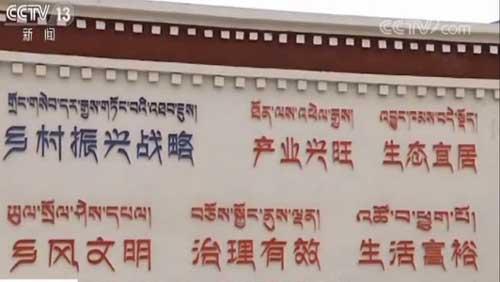 行走西藏看变迁 拉萨 整治农村人居环境 美丽乡村靓起来