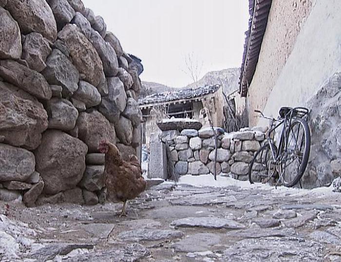 骆驼湾村的小路多用石头铺砌而成,坑坑洼洼,凹凸不平。