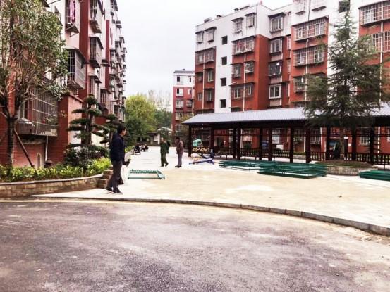 从杂草丛生到美丽小区。图为白云改造后的庆春街小区一角。