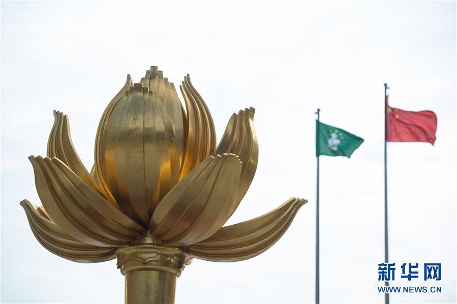 这是澳门金莲花广场上的《盛世莲花》雕塑(12月13日摄)。新华社记者 张金加 摄
