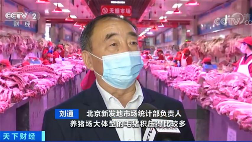 刘通介绍;今年全国肉价连降11周 猪肉供应压力减轻