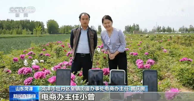 山东菏泽:今年花农进入网络直播间直播带货   多措并举拓市