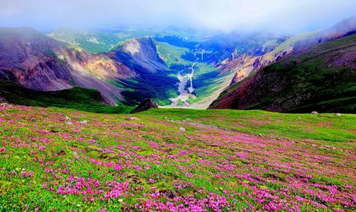 高山苔原-吉林长白山国家级自然掩护区(摄影 朴龙国)