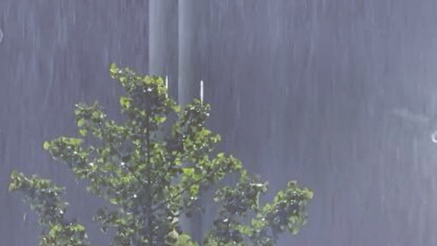 中央气象台今晨发布暴雨黄色预警 这些地区将有大范围强降雨