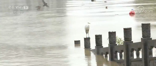 陕西略阳洪峰过境 部分街道被淹 紧急转移群众
