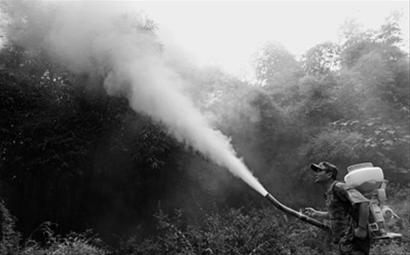 重庆市永川区茶山竹海国有林场工人在林区