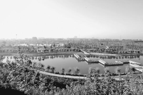 2011年,望奎植物园被评为全省县级休闲场所示范工程.