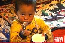 Yaks and yoghurt help Tibetans hold on to traditional customs