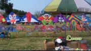 小贩公园挂万只风筝兜售成风景