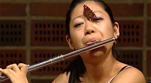 实拍女笛手吹奏引来蝴蝶飞舞罕见一幕