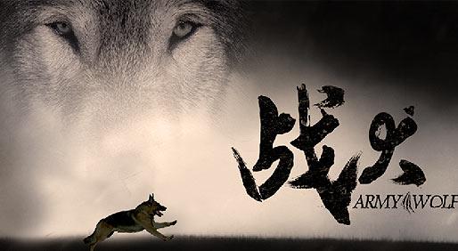 军旅版忠犬八公催泪演绎人犬之情