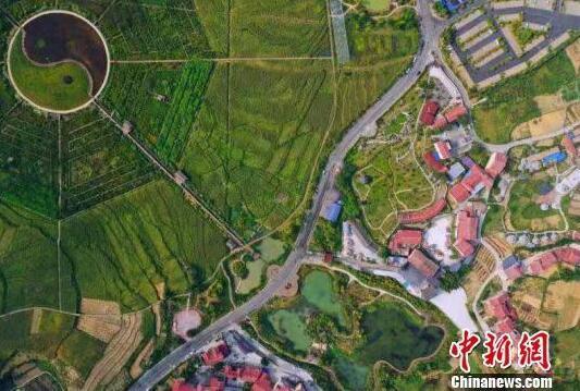 图为贵州省仁怀市坛厂镇枇杷村乡村公路风景 尚宇杰 摄