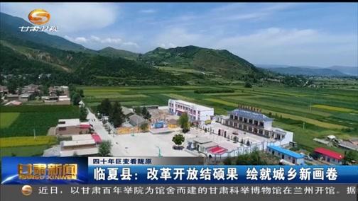 临夏县:改革开放结硕果 绘就城乡新画卷