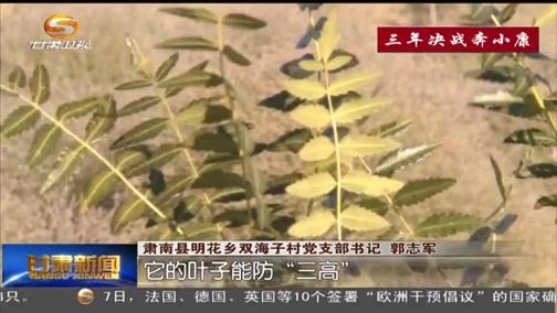 三年决战奔小康 甘肃:走特色种植路 让农民持续增收