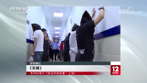 《天网》 20200110 系列纪录片《派出所的故事·上海》(2)