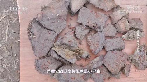 [探索·发现]考古队员们推测M71号墓是一座瓮棺墓