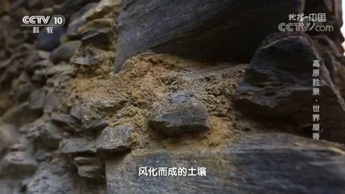 [地理·中国]桃坪羌寨成为研究古代建筑抗震的重要样本