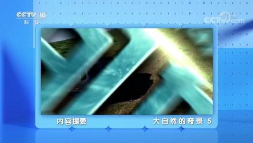 《地理·中国》 20200214 大自然的奇景 5