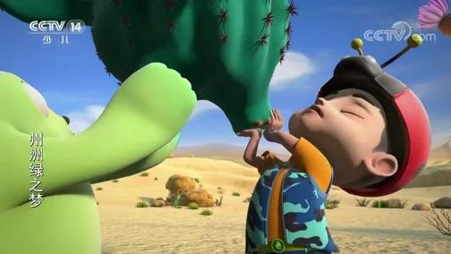 《州洲绿之梦》 第22集 会爬行的仙人掌