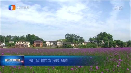 """[重庆新闻联播]南川首次""""云签约""""引资128亿元"""