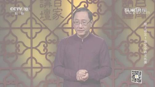 [百家讲坛]爱上语文1 语文中的文化美 语文中的中国古典诗词