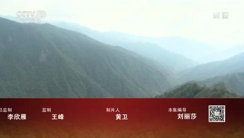 《远方的家》 20200313 世界遗产在中国 神奇梵净山