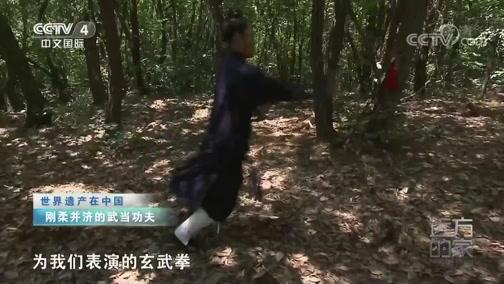 《远方的家》 20200324 世界遗产在中国 魅力武当山