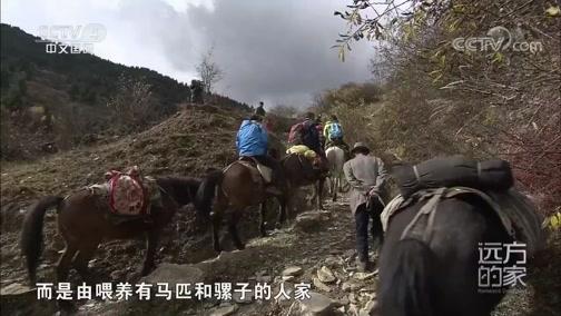 [远方的家]世界遗产在中国 黄龙:古城松潘