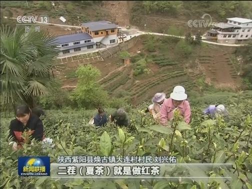 [视频]陕西:精准施策 确保剩余贫困人口如期脱贫