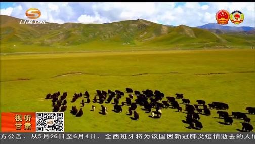 [甘肃新闻]代表委员建言 南水北调西线工程备受西部代表委员关注