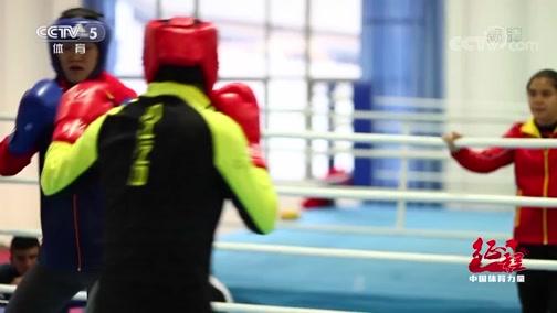[拳击]谷红:享受拳击 做好每一天