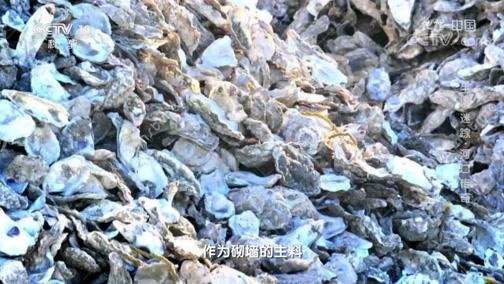 [地理·中国]以蚝壳为墙的建筑方式