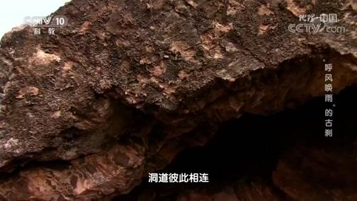 [地理·中国]洞腔构造与降雨前的龙吟虎啸声有哪些关联
