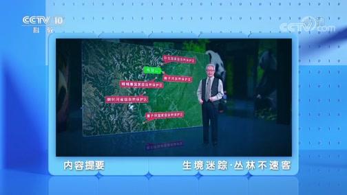 《地理·中国》 20200705 生境迷踪·丛林不速客