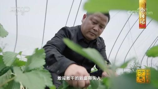 """[中国影像方志]小岗村:从""""大包干""""到""""众创业"""" 改革开放再出发"""