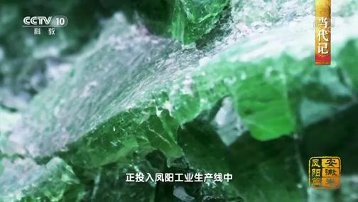 [中国影像方志]凤阳篇 当代记