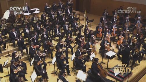 [CCTV音乐厅]《堂吉诃德》变奏七 大提琴:王健 中提琴:张安祥 指挥:余隆 协奏:中国爱乐乐团