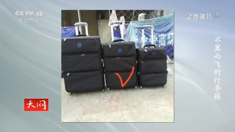 《天网》 20201223 不翼而飞的行李箱