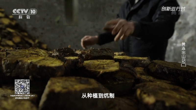 《创新进行时》 20210511 黄连出山记(二)
