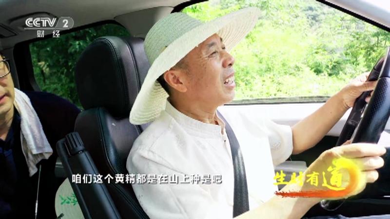 《生财有道》 20210727 乡村振兴中国行——安徽青阳:特色产业财富路