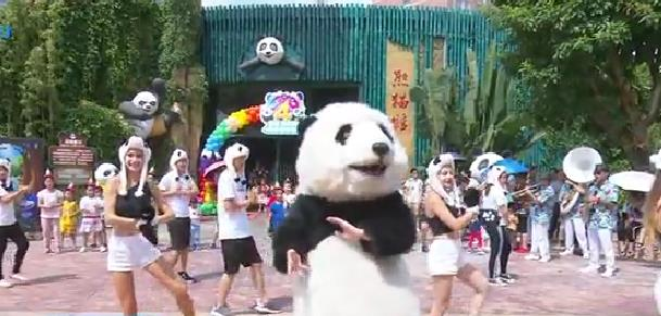 大熊猫双胞胎兄弟迎来4周岁生日[今日视区 2019.08.05] 00:02:12
