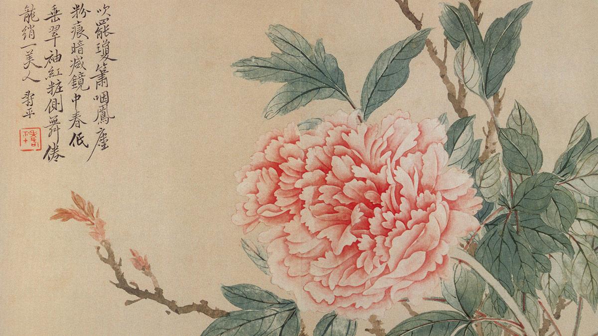 【央视画廊】最美的花送给最美的园丁
