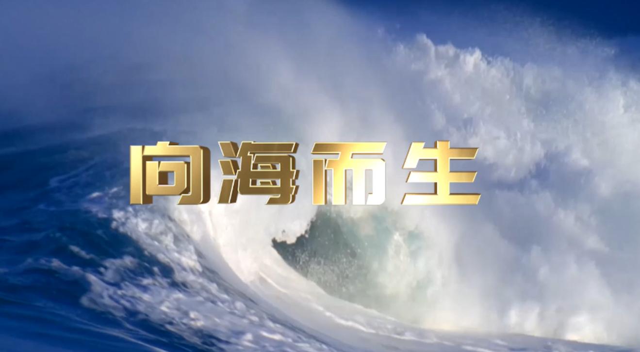 《向海而生》宣传片(二) 00:01:00
