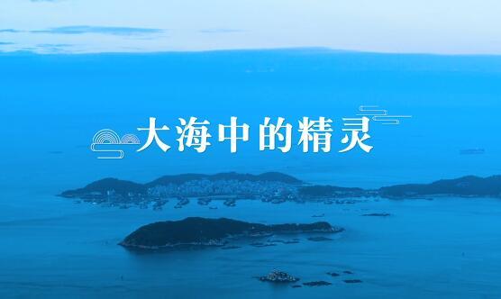 《航拍闽西南》:大海中的精灵 00:04:32