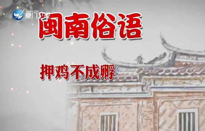【学说闽南话】押鸡不成孵 2019.11.1 - 厦门卫视 00:01:02