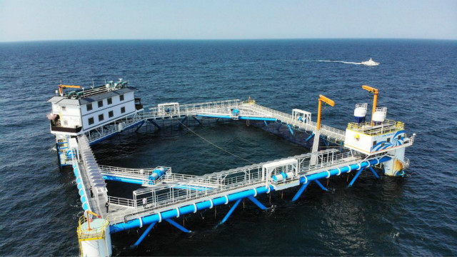 China promotes sustainable, ecological marine farming with technology