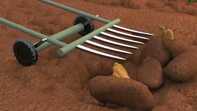 《我爱发明》 20210224 佛手山药采挖器