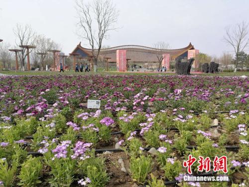 http://www.edaojz.cn/jiaoyuwenhua/115131.html