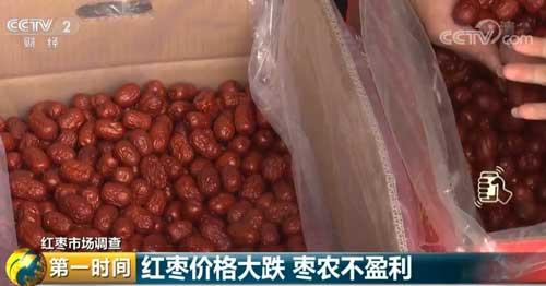 红枣价格大跌 枣农不盈利